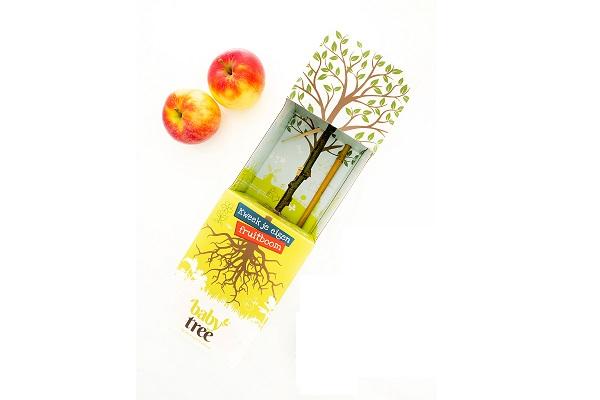 Baby-Tree-Appel (1)